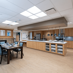 Altro Wood adhesive free Featured Image (3)